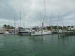 'Trillium' docked next to 'Silver Maple'