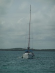 Crista and Fritz on 'Cloudy Bay' following close behind