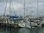 Silver Maple and Cloudy Bay at the Hope Town Inn and Marina