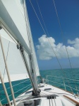 Good sailing to Black Point