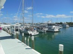Silver Maple docked in Hopetown (in the middle)