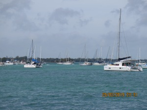 Windy in Marsh Harbour as we leave for Guana Cay